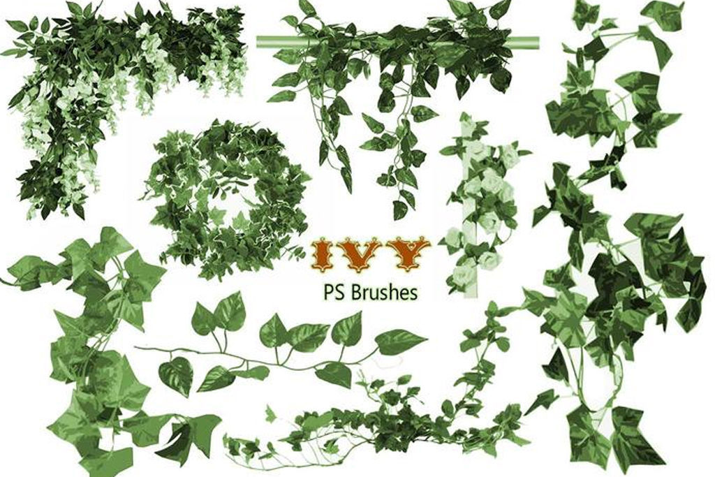 Free & commercial50 kinds of plant-based brushes for Photoshop specialized in grasses, leaves, ivy, etc. [nature / free / decoration / illustration]